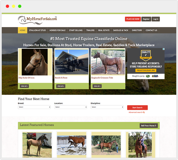 MyHorseForSale.com website design
